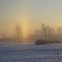 морозным утром :: Елена