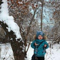 Вроде осень?!.. Чего снег-то выпал? :: Екатерина Бордунова
