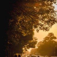 Sunset :: Александр Хохлов
