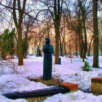 Зимний пейжаж :: Владимир Бровко