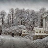 Зимние зарисовки :: Михаил Александров