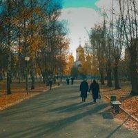 На пути :: Александрр Миронов