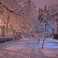 Волшебный вечерний свет :: Татьяна Кретова