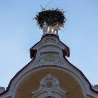 Над крышей Детского дома :: Игорь Вишняков