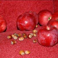 Красные  яблоки  на  красном.... :: Валерия  Полещикова