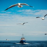 Морской конвой :: IgorVKIv