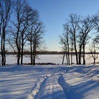Зимний пейзаж :: Вадим Джусев