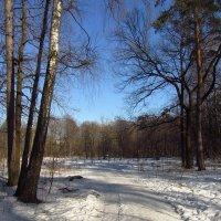 Img_9616 :: Андрей Лукьянов