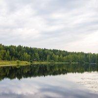 Где то в Тверской области :: Антон Богданов
