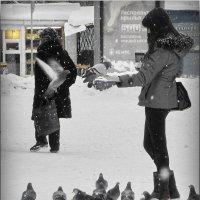 Покормим птиц! :: Владимир Шошин