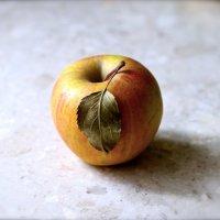 зимнее яблоко :: Мария Корнилова