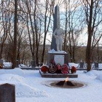 Памятник героям, освобождавшим Красное Село :: Алла Aпшиник