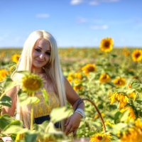 Лето :: Оксана Жукова