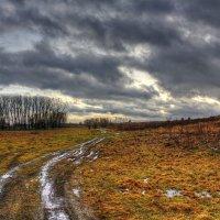 Нетипичный январь :: Артем Рязанцев
