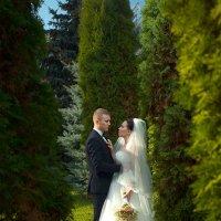 Жених и невеста в зеленом парке :: Георгий Трушкин
