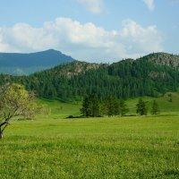 Каракольская долина :: Ольга Чистякова