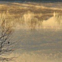 морозный туман над речкой :: Алексей Меринов