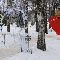 """Фотовыезд ,Зима 2015"""" :: Лара ***"""