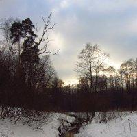 IMG_2404 - Почти цветное :: Андрей Лукьянов