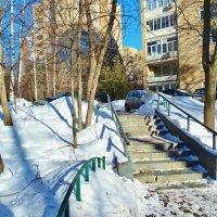Московские дворики :: Светлана Лысенко