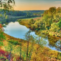 Золотая осень :: Андрей Куприянов