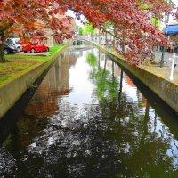 Голландская провинция :: svk
