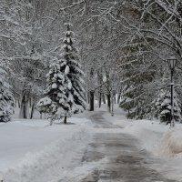 Зимний этюд 2 :: Константин Жирнов