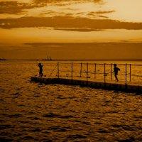 юные рыбаки :: Сергей Харченко