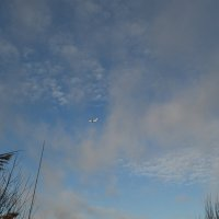 Небо. :: zoja