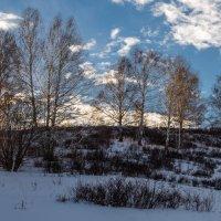 Зимнее солнце :: Юрий Сименяк