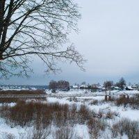 Пасмурный зимний день :: Alex Urb