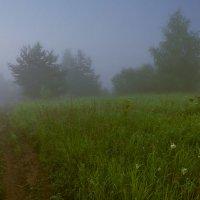 Утро туманное :: Валентин Котляров