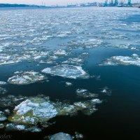Ледоход на Куршском заливе :: Леонид Соболев