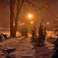 Ночь в парке :: Константин Бобинский