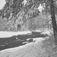 После снегопада :: vladimir