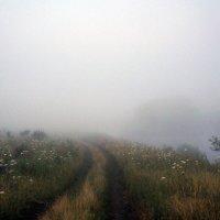 Утро туманное :: Юлия Кондратьева