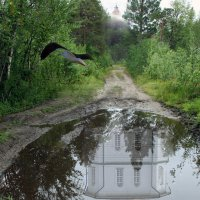 Соловки. Дорога на Секирную гору. :: Сергей Яснов