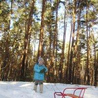 зимняя прогулка :: ирина амблямова
