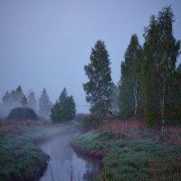 Рассветная ручьевая... :: Roman Lunin
