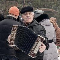 Гармонист :: Вадим Sidorov-Kassil