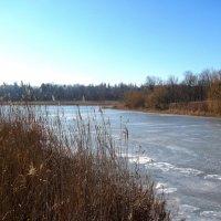 Ледяная река :: super-krokus.tur ( Наталья )