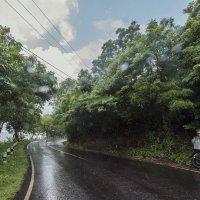 трасса,дождь :: Александр