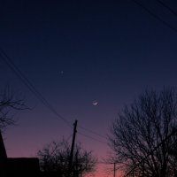 Молодая луна :: Андрей Макаров