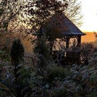 Холодный осенний рассвет. Изморозь. :: Пётр Сесекин