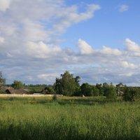 Деревенский пейзаж... :: monter-52 monter-52
