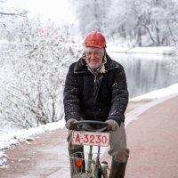 Прогулка :: Михаил Бибичков