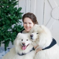 самоеды :: Мария Новенькова