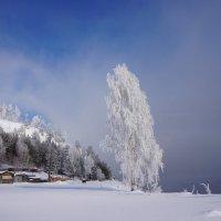 Февраль :: Галина Подлопушная