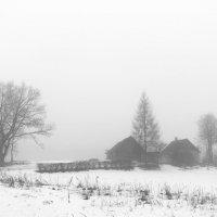Туманные дни в конце февраля (4) :: Юрий Бондер