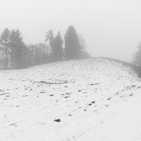 Туманные дни в конце февраля (1) :: Юрий Бондер